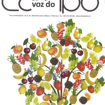 Artigo na Revista Voz do Campo - edição de outubro de 2018